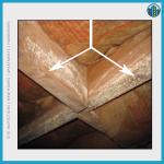 Mould on timber frames